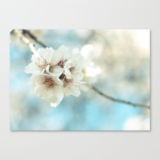 Blue softness Canvas Print