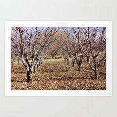 In the Orchard Art Print