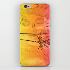 Colors are everywhere iPhone & iPod Skin