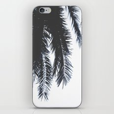 Palm Tree leaves abstract iPhone & iPod Skin