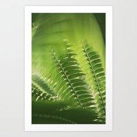 The Green Light #4 Art Print