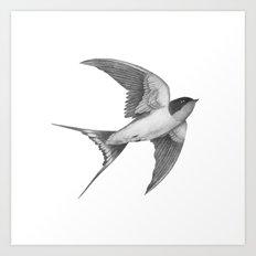 Barn Swallow - mono Art Print