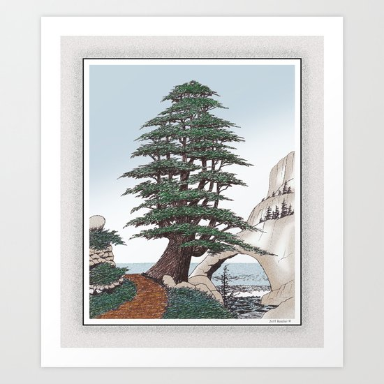 Cedar Of Lebanon Pen And Pencil Drawing Art Print By