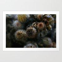 Prickly points Art Print