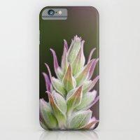 Prickley Pastels iPhone 6 Slim Case
