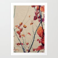 Contrasted Fall Art Print