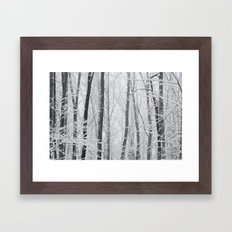 Winter Wood Framed Art Print