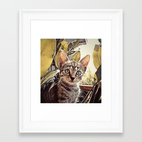 Mouser Framed Art Print