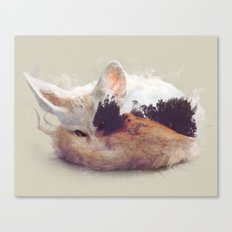Desert Fox Canvas Print