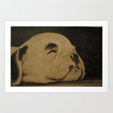 Puppy on the floor boards (Bull terrier) Art Print