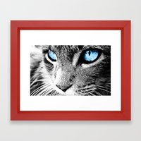 Kitty Blue Eyes Framed Art Print