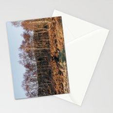 Birch trees basked in warm light at sunset. Upper Padley, Derbyshire, UK. Stationery Cards
