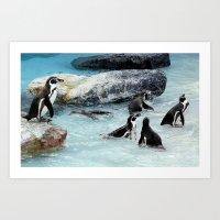 Penguins. Art Print