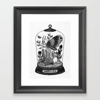 Wonders of Life II Framed Art Print