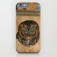 iPhone & iPod Case featuring Hibou means owl by Shutterbee Photography