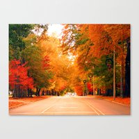 Autumn in the South Canvas Print