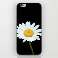 Pure White iPhone & iPod Skin