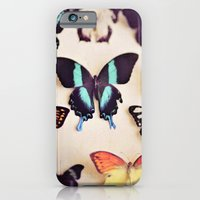 Butterfly Collection iPhone 6 Slim Case