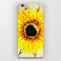 Sunflower from Water iPhone & iPod Skin