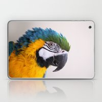 Blue-and-yellow Macaw Laptop & iPad Skin