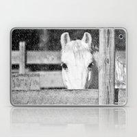 Winter Horse Laptop & iPad Skin