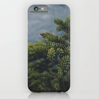 iPhone & iPod Case featuring Evergreen by Brad Yuen