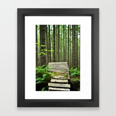 Bike Trail, BC Framed Art Print