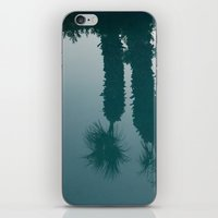 Desert Reflection iPhone & iPod Skin