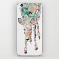 into the wild little deer iPhone & iPod Skin