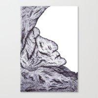 Ent Canvas Print