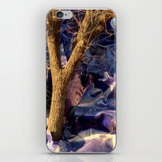 Growing Out Of Discord iPhone & iPod Skin