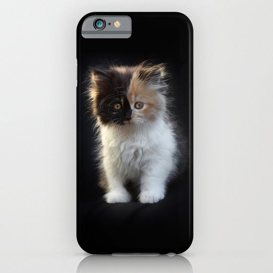 Cutest Kitten Ever iPhone & iPod Case