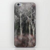 Ohio Trees iPhone & iPod Skin
