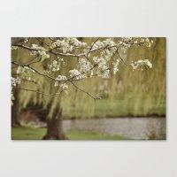 Spring-scape Canvas Print
