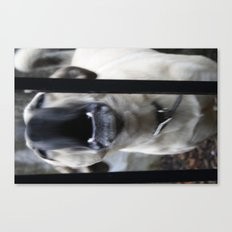 Barking Canvas Print
