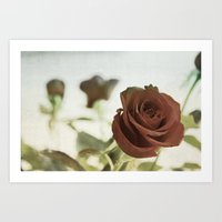 Roses for Scarlet Art Print