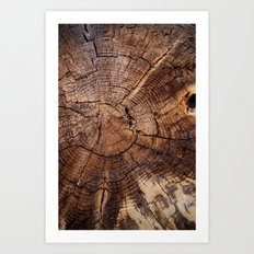 Knock On Wood Art Print