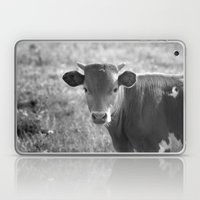 Baby Longhorn Laptop & iPad Skin