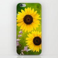 Sunflowers.  iPhone & iPod Skin