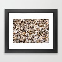 Shells For Days  Framed Art Print