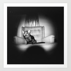 Fisheye Black Cat Art Print