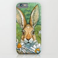 Funny bunnies - with Chamomiles 889 iPhone 6 Slim Case
