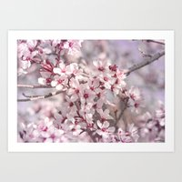 Icy Pink Blossoms - In M… Art Print