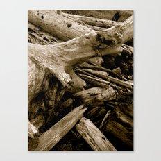 Driftwood Canvas Print