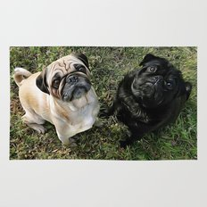 Two Cute Pugs . . .  We are Gorgeous and we Know It! Rug