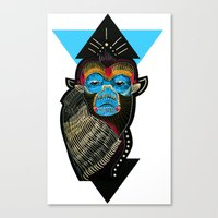 Color Me Monkey Canvas Print