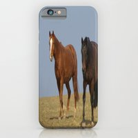 horses iPhone & iPod Cases featuring horses by Laake-Photos