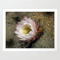 Cactu Flower Art Print
