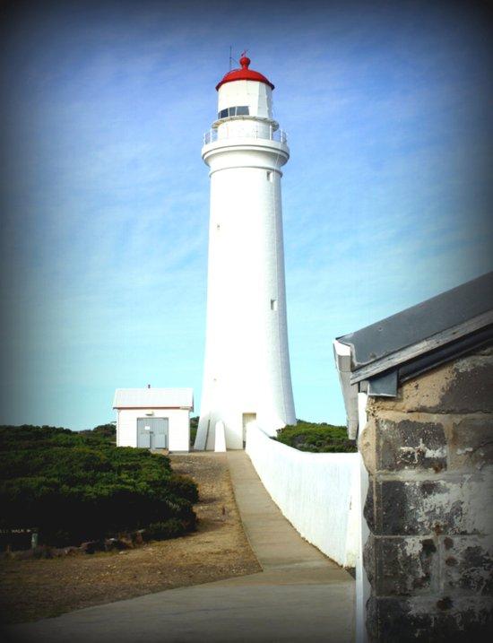 Cape Nelson Lighthouse  Canvas Print