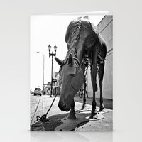 Urban horse Stationery Cards